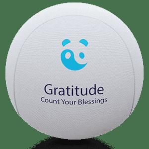 Mindfulness Gratitude Stress Ball